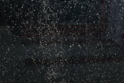Granito Black Aswan Lámina