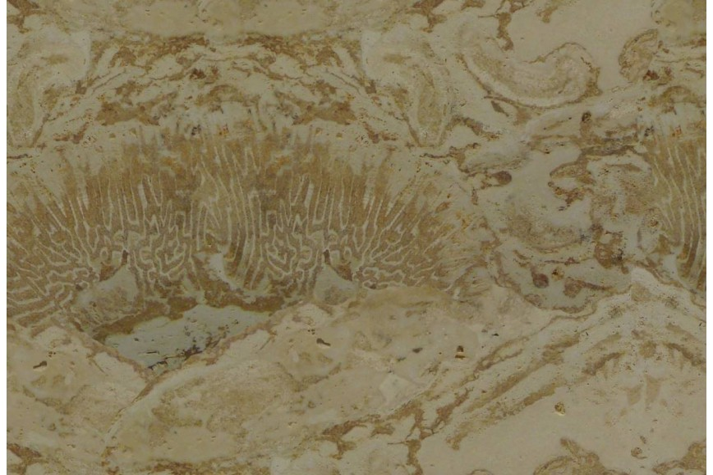 Piedra Coralina 40.6X40.6X2 S/E