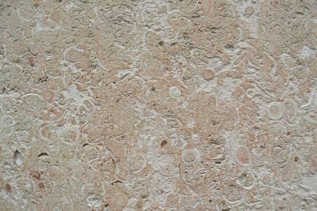 Granito Kashmir White Extra