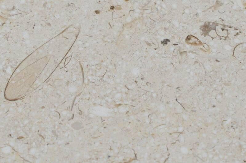 Mármol Marfil Sinai Honed 40.6X40.6X1.2