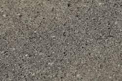 Cantera Conchuela Fosil Apomazado