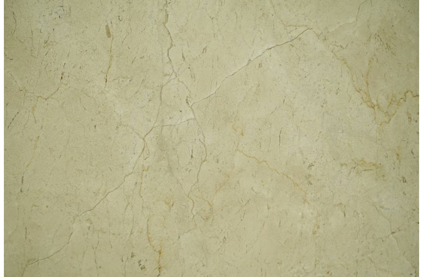 Limestone Black With Gold Animailer Collection