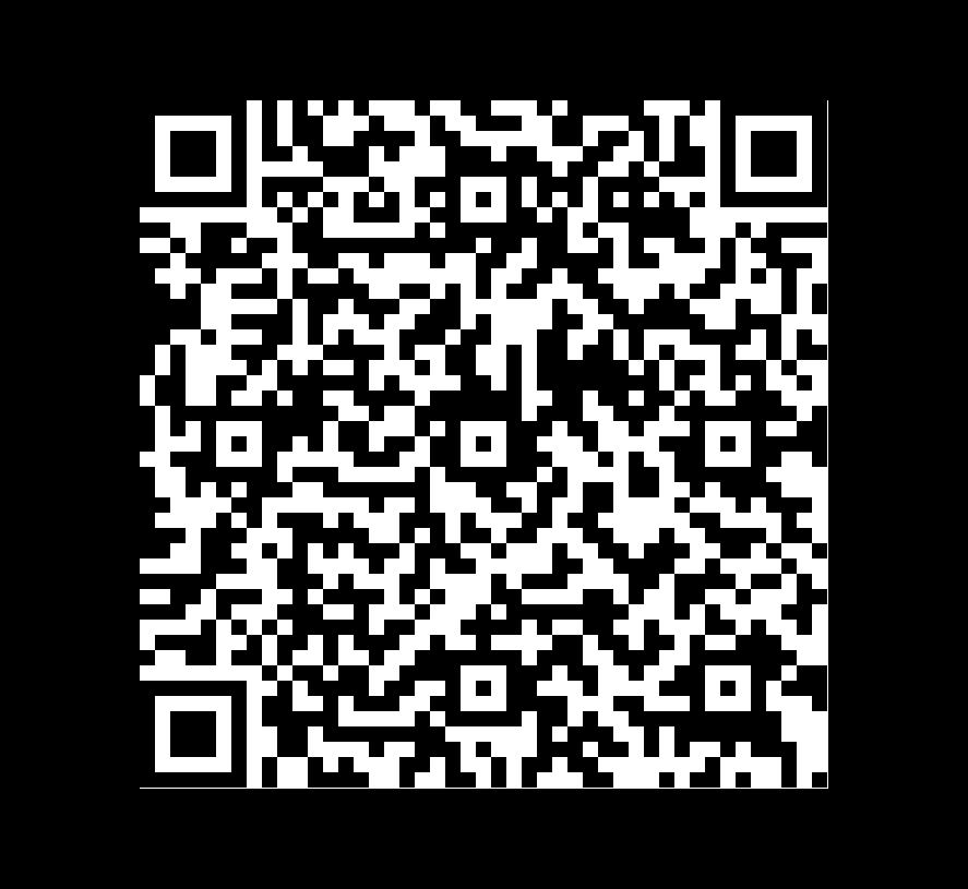 QR Code de Granito Negro Santino Flamed+ Brushed