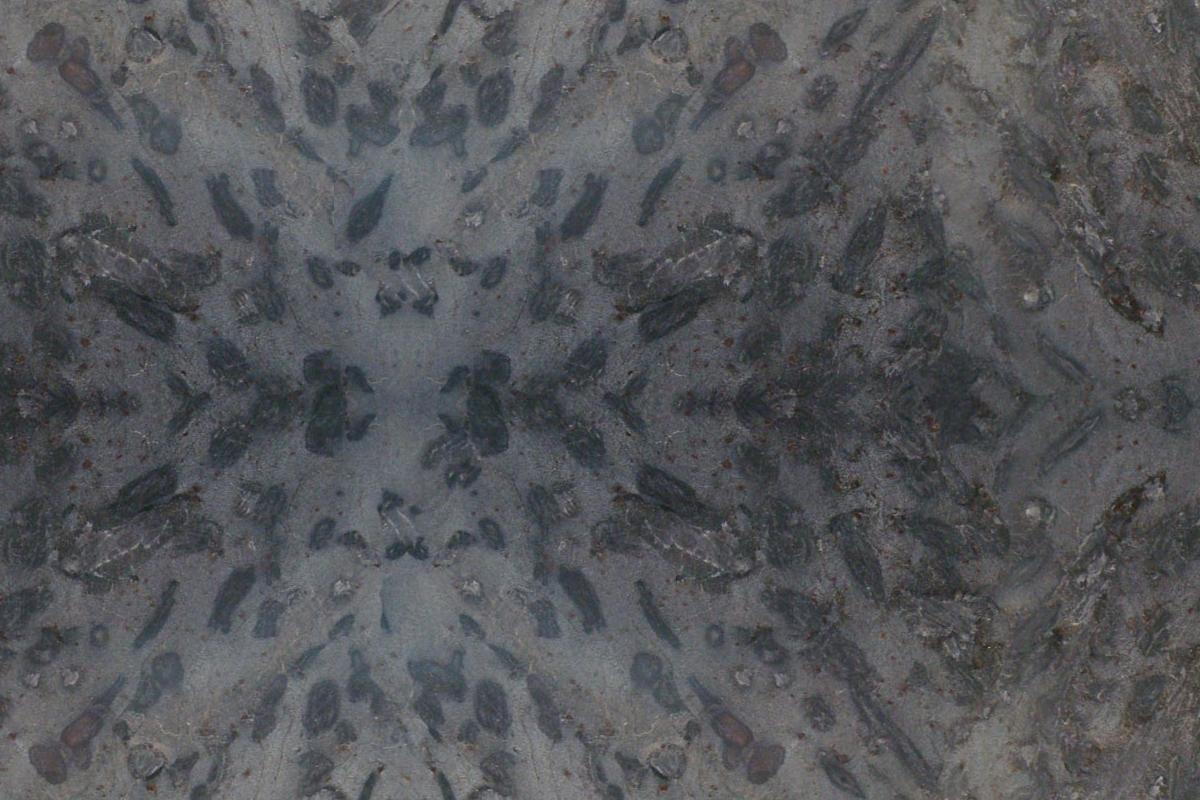 Granito Negro Galapagos Brush